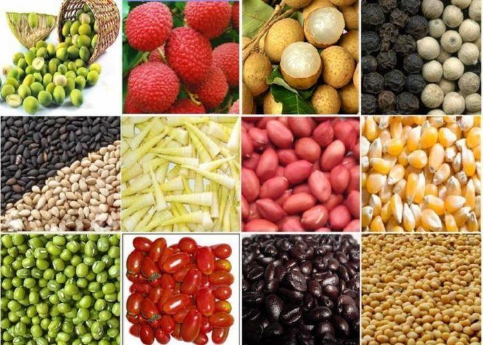 xuất khẩu nông sản